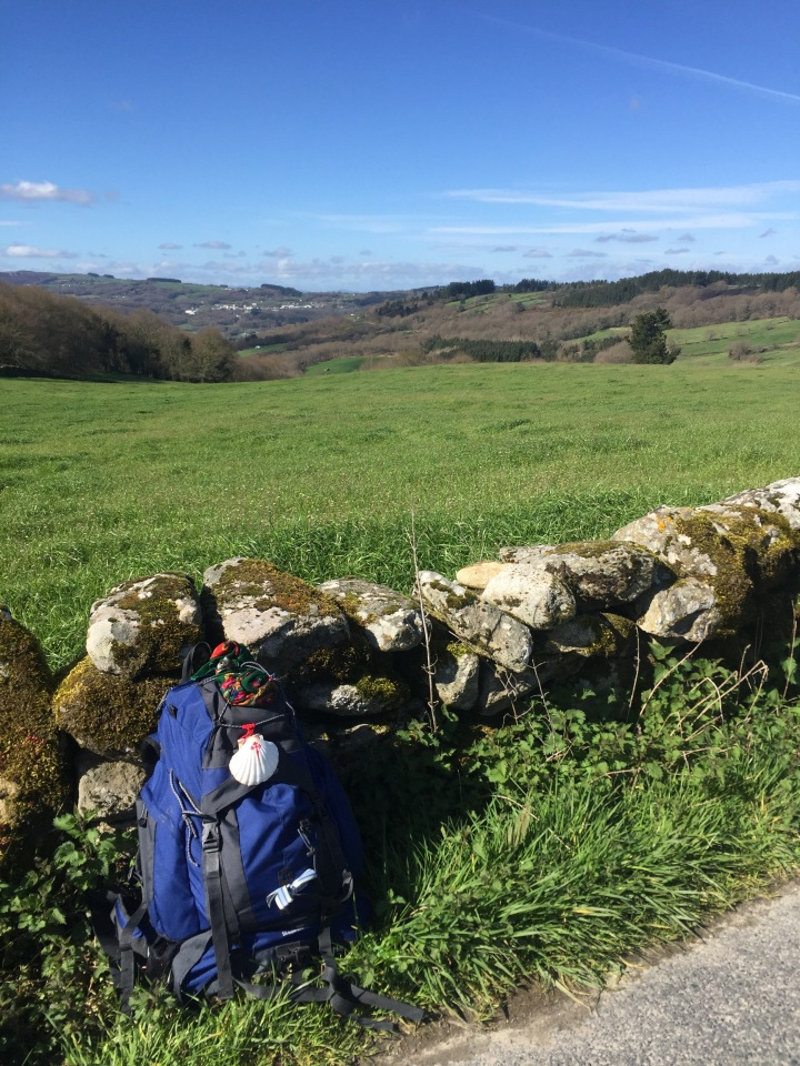 A pause in the Galician countryside.
