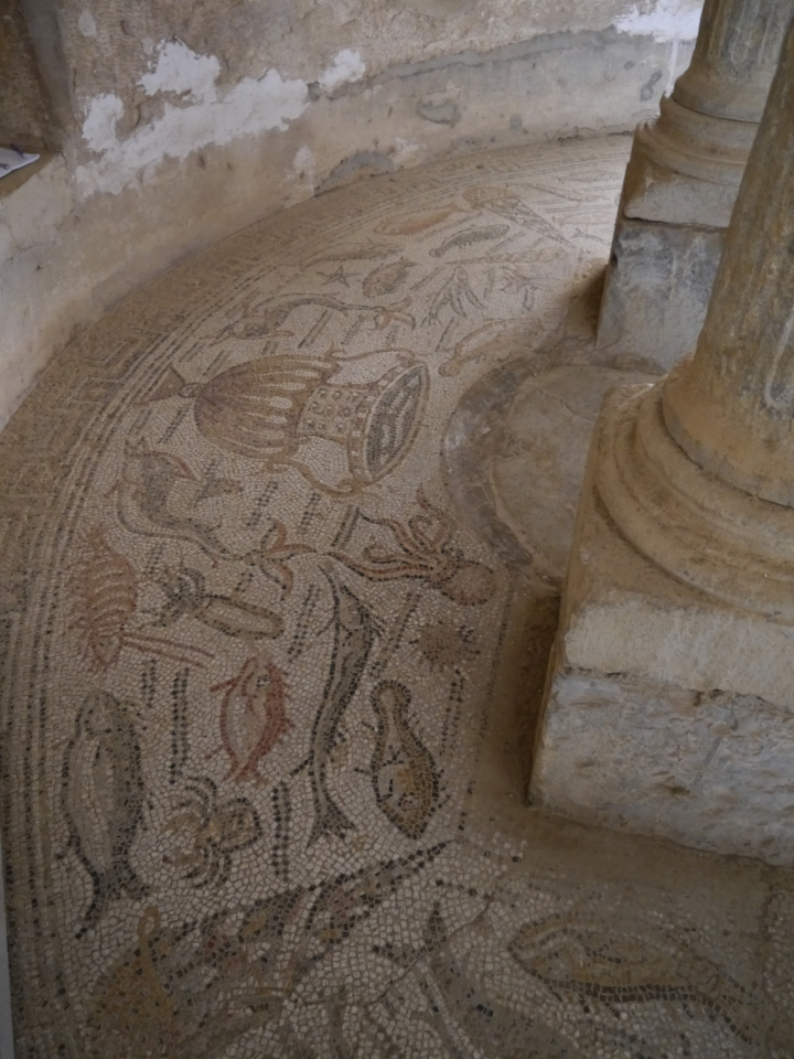 Mosaic decoration around the baptismal font of Djémila