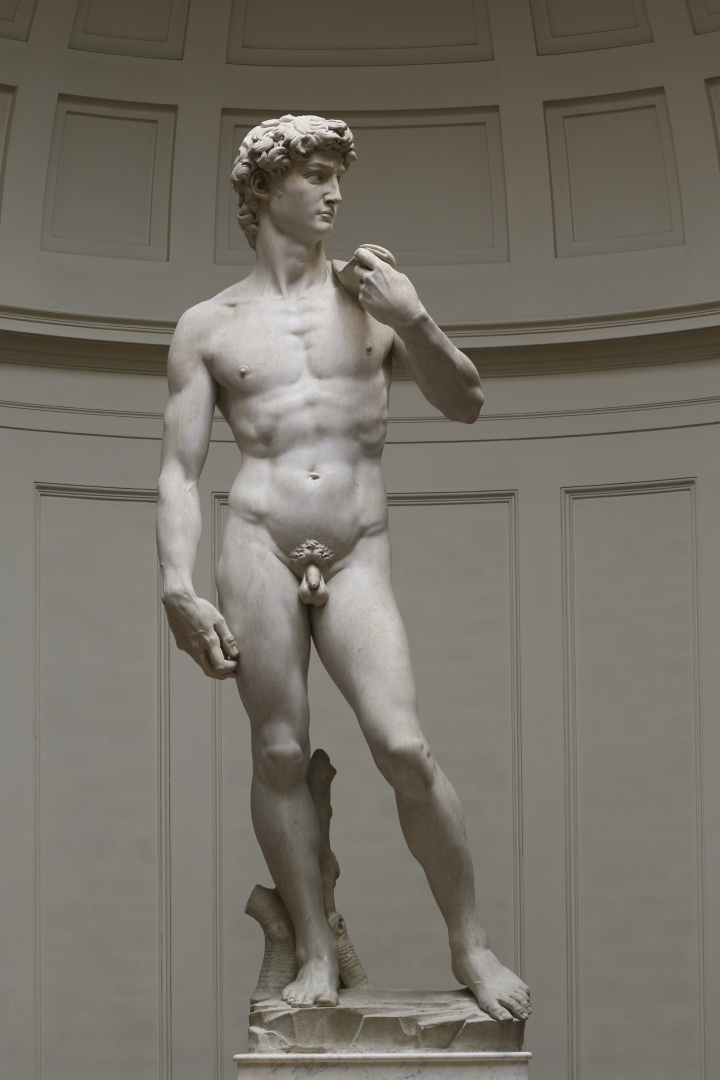 David by Michelangelo, Florence Galleria dell'Accademia